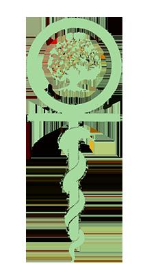 Edgar_Cayce_Logo